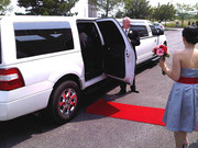 Limousine service offers in Florida for low price last minute !!!