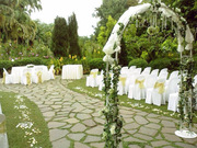 Wedding Planners In Florida